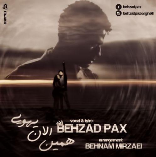 Behzad Pax Hamin Alan Yehoei
