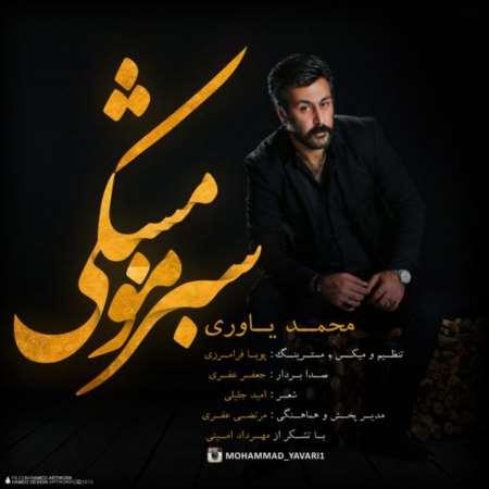 Mohammad Yavari Sabze Moo Meshki